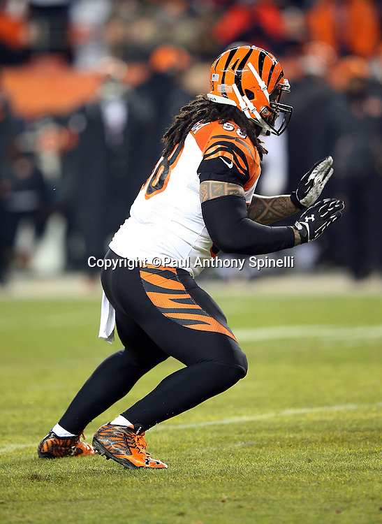 Cincinnati Bengals middle linebacker Rey Maualuga (58) chases the action during the 2015 NFL week 16 regular season football game against the Denver Broncos on Monday, Dec. 28, 2015 in Denver. The Broncos won the game in overtime 20-17. (©Paul Anthony Spinelli)