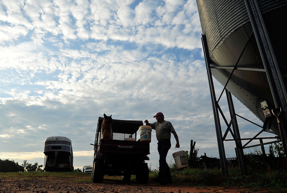 John Stuedemann loads some cattle feed into the back of his mule in the early morning at his Comer, Ga. farm on Thursday, June 17, 2010.  .In 2009, Georgia's annual agricultural production fell by six percent, the worst decline in ten years.