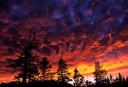 Fiery Sunset in Desolation, Lake Tahoe
