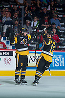 REGINA, SK - MAY 22: Benjamin Gleason #42 and Brandon Saigeon #17 of Hamilton Bulldogs celebrate a goal against the Acadie-Bathurst Titan at the Brandt Centre on May 22, 2018 in Regina, Canada. (Photo by Marissa Baecker/CHL Images)