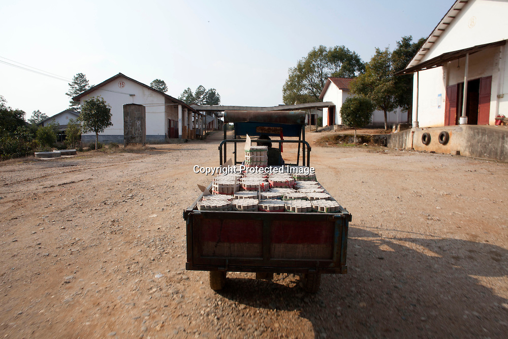 Hunan, Liuyang, Dec. 19..2013 : stacks of firecrackers are transported in the factory ground.