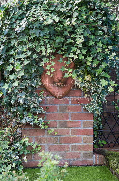Hedera (ivy) varieties growing on a brick wall, surrounding a lion's head fountain and small pond