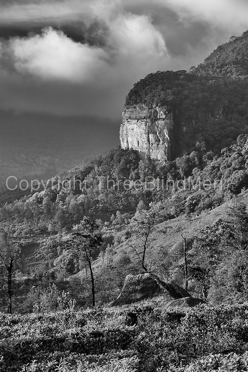 Loolecondera Cliff face.<br /> <br /> Used on page 52 of CTTA book