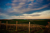 Spring Valley Vineyards Sunrise