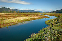 A drainage channel was created on a 285 acre parcel of private property in 2007 following the clean up and reduction of metals in the soil left from mining contamination. The area is now deemed a clean feeding habitat for migratory and resident wetland species.