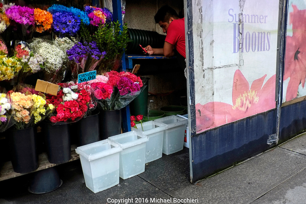 NEW YORK, NY - August 06:  A flower vendor checks his phone on August 06, 2016 in NEW YORK, NY.  (Photo by Michael Bocchieri/Bocchieri Archive)