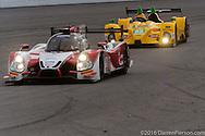 #60 Michael Shank Racing with Curb/Agajanian Ligier JS P2: AJ Allmendinger, Olivier Pla, John Pew, Oswaldo Negri, Jr.