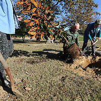 Dale Smith, center, and Sandy Witt get ready to plant a Magnolia Tree at Ballard Park in Tupelo to celebrate the Bicentennial of Mississippi's statehood.