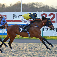 Aquilonius and Jamie Spencer winning the 2.40 race