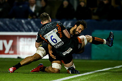 Marco Mama of Worcester Warriors celebrates with teammate Ted Hill of Worcester Warriors after scoring a try - Mandatory by-line: Robbie Stephenson/JMP - 17/01/2020 - RUGBY - Sixways Stadium - Worcester, England - Worcester Warriors v Castres Olympique - European Rugby Challenge Cup