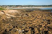Rocky wave cut platform, Vazon Bay, Guernsey, Channel Islands
