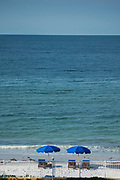 "Redington Beach, Florida, USA., Friday, 27.09.19  Looking over the Beach, Sun Loungers, ""Blue Umbrellas"",<br /> <br /> [Mandatory Credit; Pete SPURRIER]"