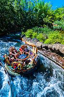 Kali River Rapids, Disney's Animal Kingdom, Walt Disney World, Orlando, Florida USA