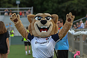 North Carolina Courage mascot Roary entertains the crowds prior to a game against Manchester City during an International Champions Cup women's soccer game, Thurday, Aug. 15, 2019, in Cary, NC. The North Carolina Courage defeated Manchester City Women 2-1.  (Brian Villanueva/Image of Sport)