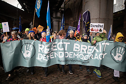 © Licensed to London News Pictures . 29/09/2019. Manchester, UK. Pro-EU demonstrators march through Manchester City Centre to Castlefield Bowl . Demonstrations for and against Brexit , austerity measures , the environment and numerous social issues take place across Manchester during the first day of the Conservative Party Conference taking place at the Manchester Central Exhibition Centre . Photo credit: Joel Goodman/LNP