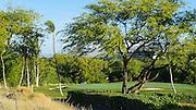 Mauna Kea Resort, Kohala Coast, Island of Hawaii