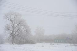 March 27, 2019 - Village Panov Bushes, Sampur Dis, Tambov region, Russia - Russian village in fog  (Credit Image: © Demian Stringer/ZUMA Wire)