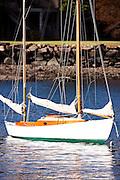 Cadenza moored in Indian Harbor.