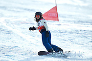 """Schladming, Austria - 2017 March 21: Biayna Sardarian competes in the Snowboarding Unified Sports Experience during Alpine Skiing Competition while Special Olympics World Winter Games Austria 2017 on the """"Sepp-Walcher-Downhill"""" (Slope 32) near the """"Tauernalm"""" in Rohrmoos on March 21, 2017 in Schladming, Austria.<br /> <br /> Mandatory credit:<br /> Photo by © Adam Nurkiewicz / Mediasport<br /> <br /> Adam Nurkiewicz declares that he has no rights to the image of people at the photographs of his authorship.<br /> <br /> Picture also available in RAW (NEF) or TIFF format on special request.<br /> <br /> Any editorial, commercial or promotional use requires written permission from the author of image.<br /> <br /> Image can be used in the press when the method of use and the signature does not hurt people on the picture."""