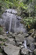 090410 EL YUNQUE PUERTO RICO