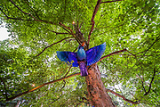 Giant Hummingbirds in teh Faraway Forest - The 2017 Latitude Festival, Henham Park. Suffolk 14 July 2017