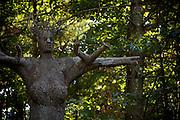 Tree Figures by Joseph Wheelwright