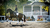 2014 USEF Dressage Pipeline Clinic, Epona Farms, CA
