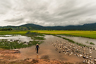 An Ethnic Minority works in the rice paddies outside of Lac Lake, Central Highlands, Vietnam, Southeast Asia