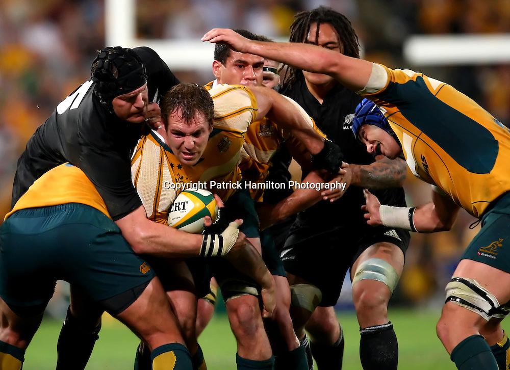 Rocky Elsom.All Blacks v Australia Tri Nations Rugby Union Test Match. Suncorp Stadium ,Brisbane. Australia,Saturday 13 September 2008 .