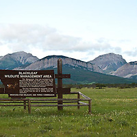 rocky mountain front, blackleaf, russel country, montana, usa, russell