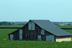 Wooden frame construction barn in field