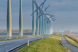 Flevoland, Zeewolde, Netherlands