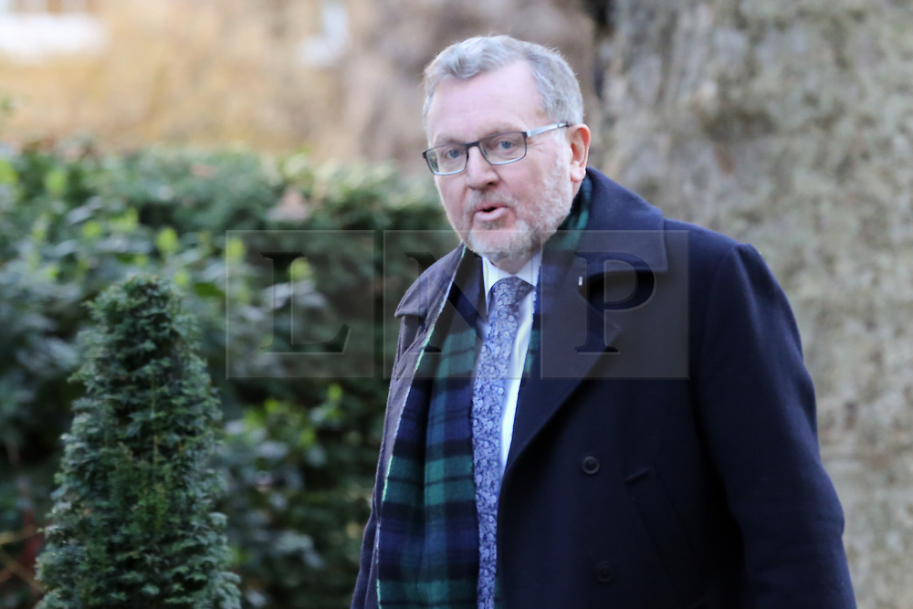© Licensed to London News Pictures. 19/02/2019. London, UK. David Mundell - Secretary of State for Scotland arrives in Downing Street for the weekly Cabinet meeting. Photo credit: Dinendra Haria/LNP