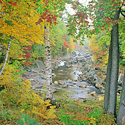 Autumn in Coos Canyon on the Swift River. Maine