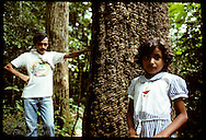 Rubber tapper and daughter stand beside rubber tree on hour walk to her school in jungle; Xapuri Brazil