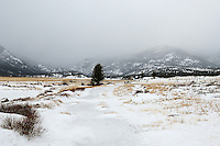 Winter in Rocky Mountain NP. Image taken with a Nikon D2xs and 17-35 mm f/2.8 lens (ISO 100, 25 mm, f/9, 1/125 sec)