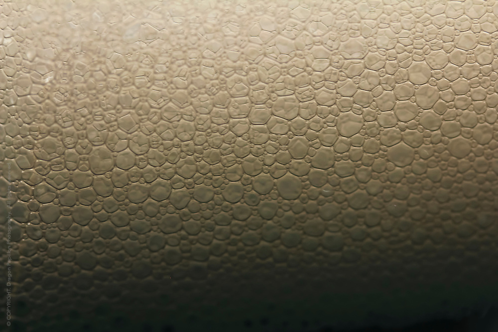 macro photography: subtle bubble texture in sepia tones