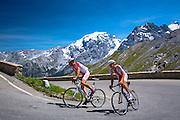 Polish cyclists ride roadbikes (Bottecchia front) uphill on The Stelvio Pass, Passo dello Stelvio, Stilfser Joch, in the Alps, Italy