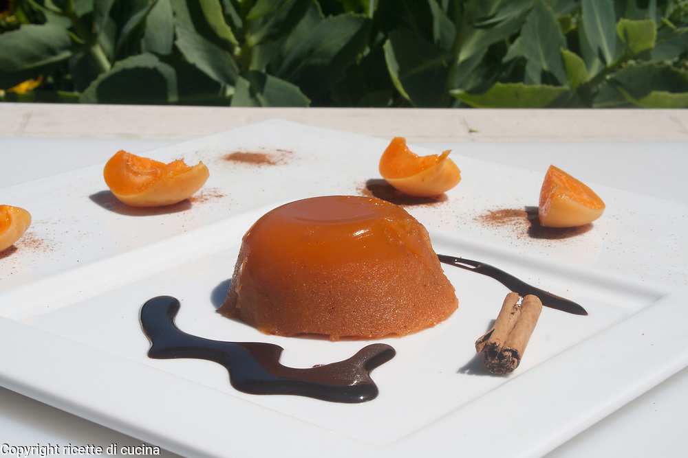 apricots gelatin side view close-up from above left on white dish outdoor presentation,italian food