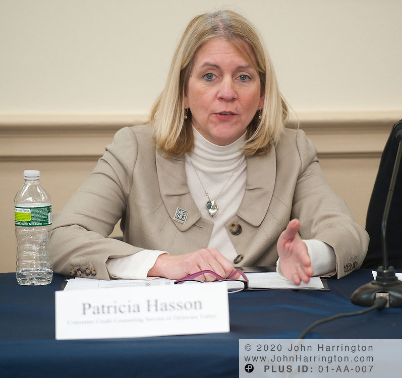 Panelist Patricia Hasson, President and Executive Director of Consumer Credit Counseling Service of Delaware Valley speaks in a panel discussion on housing finance reform presented by Radian at the Rayburn House Office Building in Washington, DC on January 21st, 2011. Radian, a company that facilitates the sales of affordable mortgages and provides private mortgage insurance brought together top executives from similarly focused companies to discuss housing finance reform and how private and public sectors play a role in it.