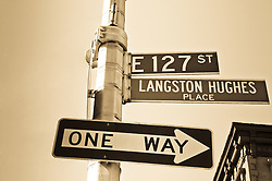Langston Hughes Place Street Sign