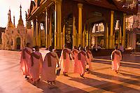 Nuns walking through the Shwedagon Pagoda, Rangoon (Yangon), Burma (Myanmar