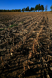 CZECH REPUBLIC VYSOCINA 16OCT11 - A harvested wheat field near Trpin, Vysocina, Czech Republic.....jre/Photo by Jiri Rezac....© Jiri Rezac 2011