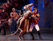 The Nutcracker <br /> choreography by Sir Peter Wright <br /> at the <br /> Birmingham Royal Ballet <br /> Birmingham Hippodrome, Great Britain <br /> 24th November 2017 <br /> King Rat fights with <br /> Mathias Dingman as The Prince <br /> <br /> Photograph by Elliott Franks <br /> Image licensed to Elliott Franks Photography Services