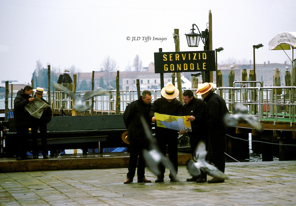 Four gondolieri consult a map together, while two others read a newspaper, on the Riva del Schiavoni, Venice.  They all wear yellow straw boaters , black jackets and pants.  It is cold.  Four pigeons flutter around them in motion blur.  The laguna and a private boat dock are visible behind them; mooring posts with seagulls perched..