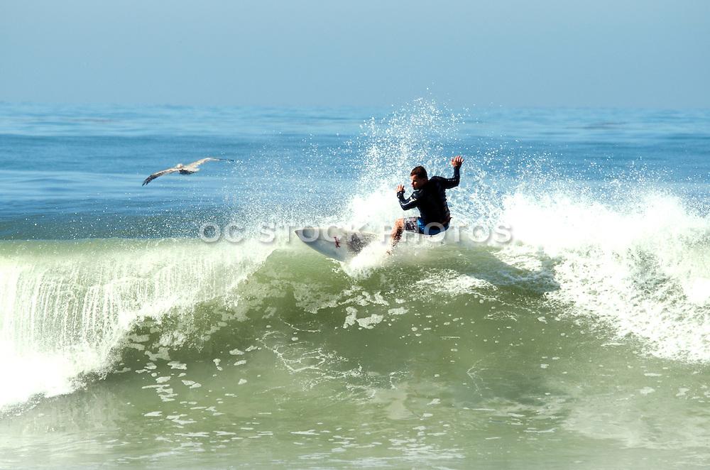 Surfing Big Waves in Orange County