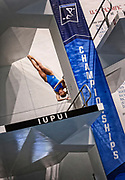 Duke's Maryellen Targonski performs in the Platform Diving prelims on the final day of the NCAA Div I Women's Swimming & Diving Championships in Indianapolis on Saturday. Photo by Michael Hickey