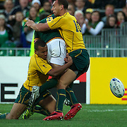 Will Genia, Australia, (left) and Quade Cooper, Australia (right) know the ball clear from Fourie du Preez, South Africa, during the South Africa V Australia Quarter Final match at the IRB Rugby World Cup tournament. Wellington Regional Stadium, Wellington, New Zealand, 9th October 2011. Photo Tim Clayton...
