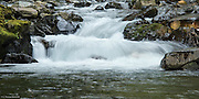 Rapids on Paradise River.