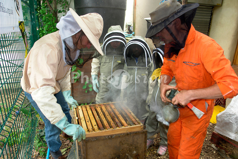 Hackney City Farm,  Children get a demonstration of bee keeping from Ian Bailey; of the London Beekepers Association; releasing smoke to pacify the bees,  Wearing their protective suits against stings,